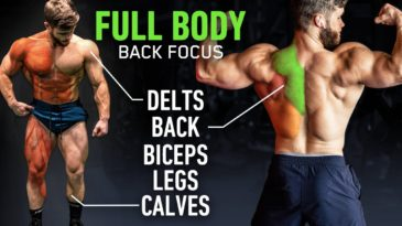 Full Body Workout: Back Focused / Jeff Nippard / Build Muscle / Advanced / Full Body / Back Focused / Science Based / Workout Inspiration