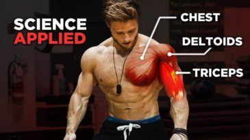 Science-Based Push Workout: Chest / Shoulders / Triceps / Jeff Nippard / Build Muscle / Beginner friendly / Science Based / Workout Inspiration