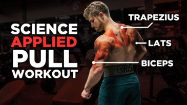 Science-Based Pull Workout: Back / Biceps / Rear Delts / Jeff Nippard / Build Muscle / Beginner friendly / Science Based / Workout Inspiration